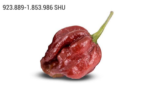 7 Pot Douglah chili paprika