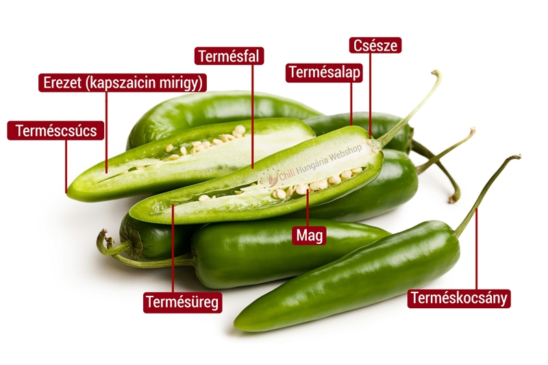 Jalapeno paprika