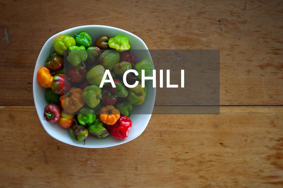 A chili paprikáról